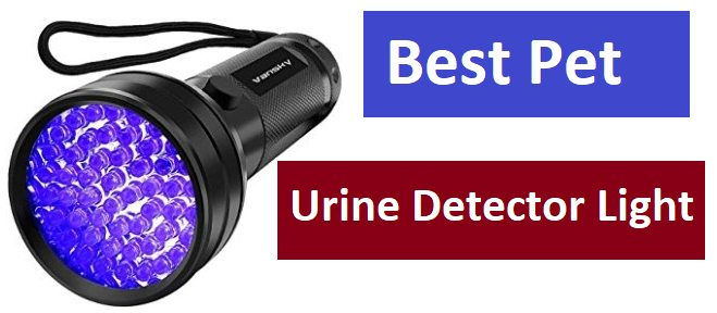 Best Pet Urine Detector Light for dog and cat