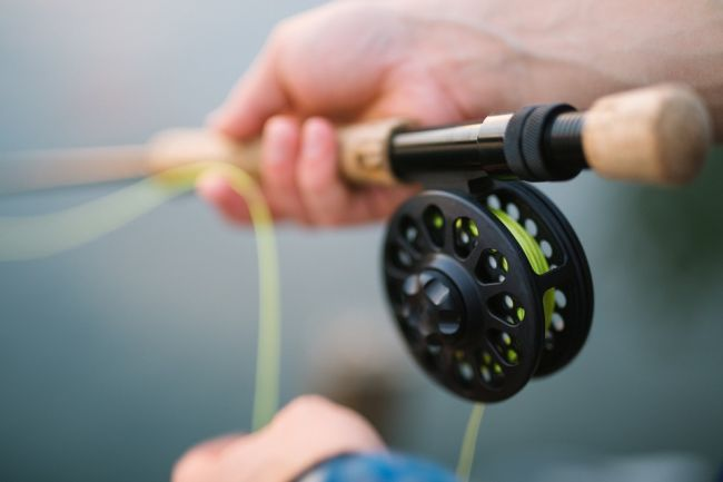 Best Fishing Poles brands available in market
